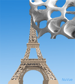 EIFFEL-TOWER-ILLUSTRATIONwe